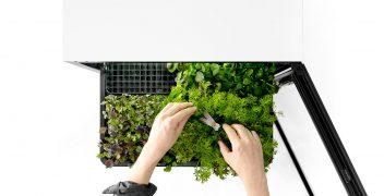 Ernte auf den Punkt: Benachrichtigung per App sorgt für optimale Ernteergebnisse des Plancube