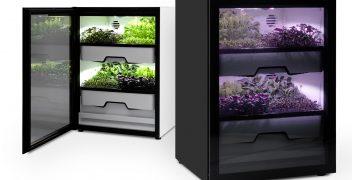 Ein breites Lichtspektrum des LED Plant Light im Plantcube sorgt für optimales Wachstum